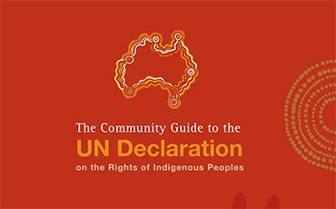 Abriged - Communinity Guide to the UN Declaration on the Rights of Indigenous Peoples