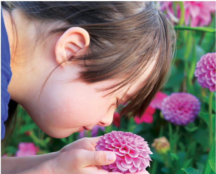 Girl with Down Syndrome smelling pink flowers