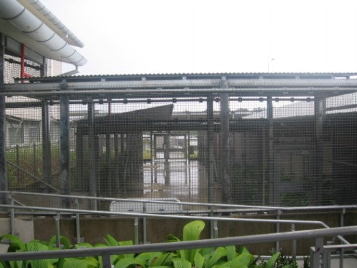 Photo of Christmas Island IDC caged walkways