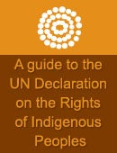 Community Guide to the UN Declaration on the Rights of Indigenous Peoples