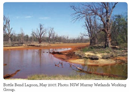 Bottle Bend Lagoon, May 2007. Photo: NSW Murray Wetlands Working
