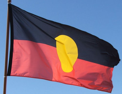Indigenous Flag