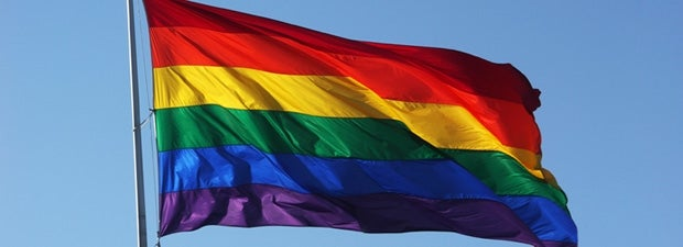 Sexuality and gender identity flags